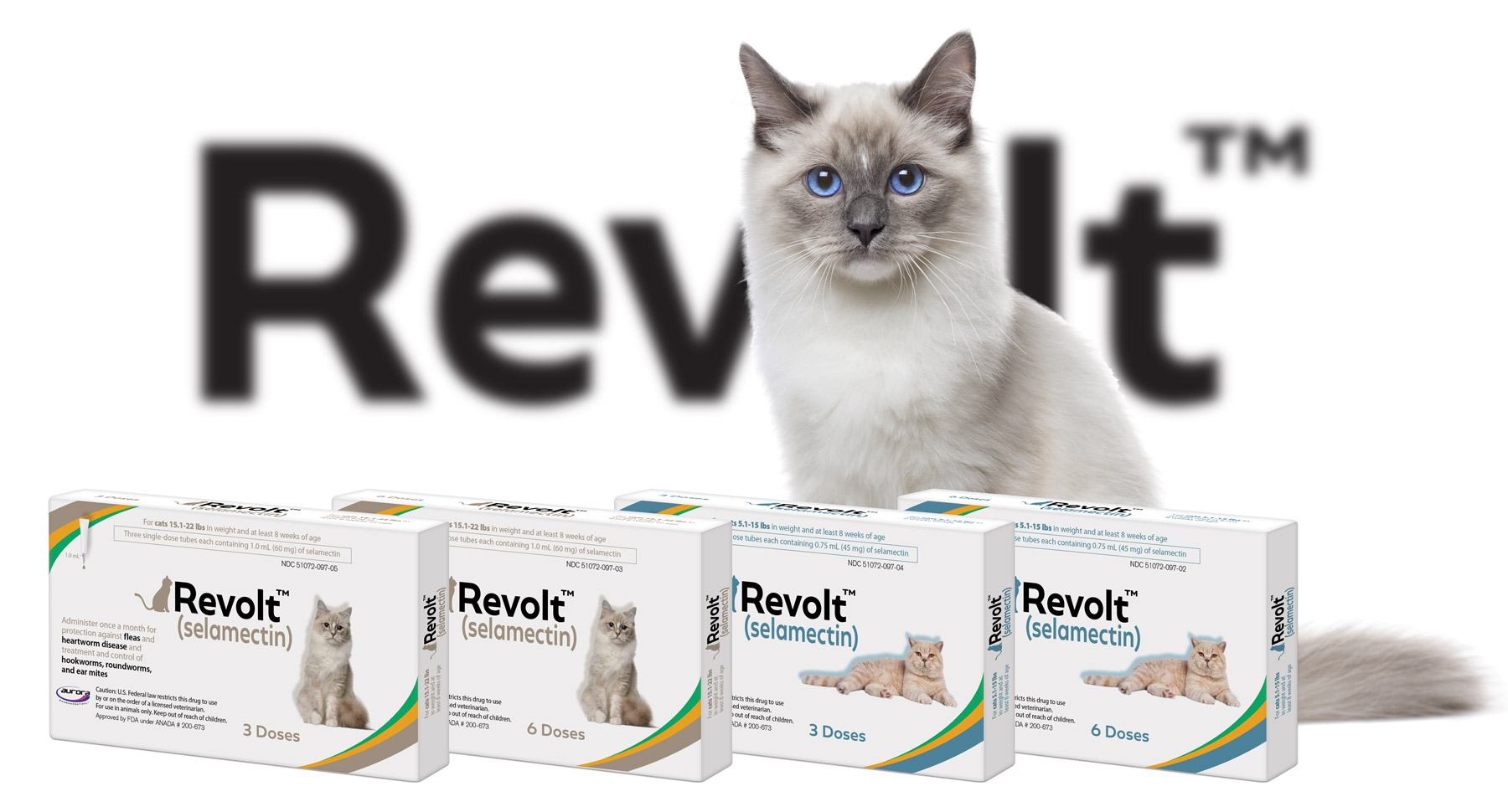 revolt topical monthly all-in-one for cats